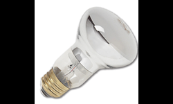 30W R20 INTERIOR REFLECTOR FLOOD BULB